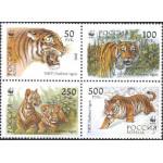 Всемирный фонд охраны диких животных. Уссурийский тигр.